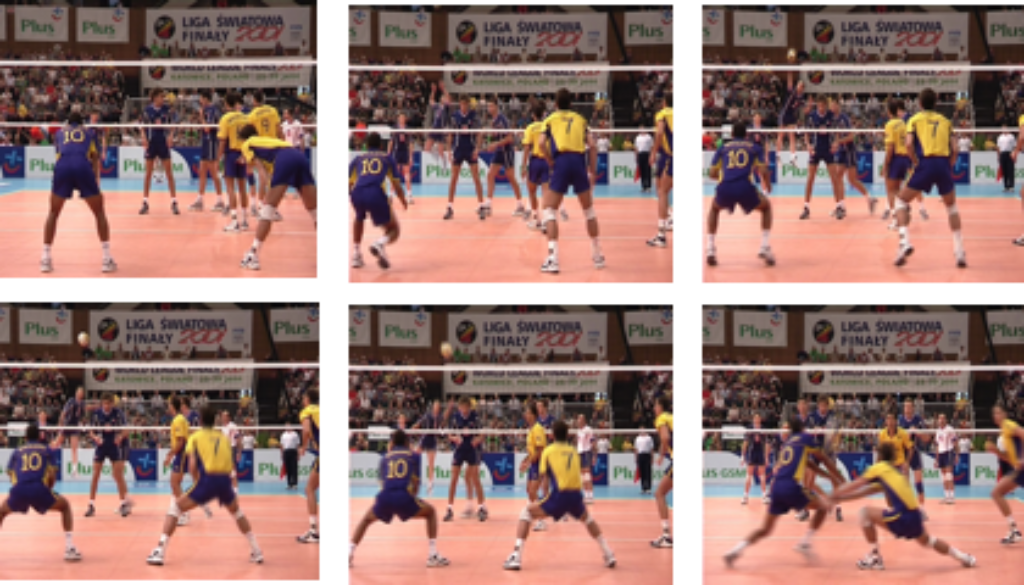 volleytype dynamics